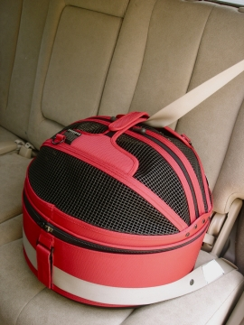 Sleepypod-in-Seatbelt